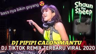 Download DJ tik Tok Terbaru 2020 - DJ PIPIPI CALON MANTU Remix full bass