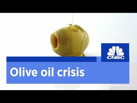 Italy's olive oil crisis | CNBC International