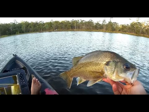Australian Bass with Lowrance Hook2