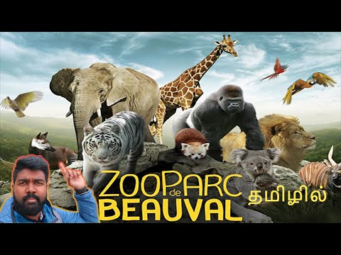 Beauval zoo in தமிழ் | Tamil VLOG | France | The largest animal collection zoo in france and europe.