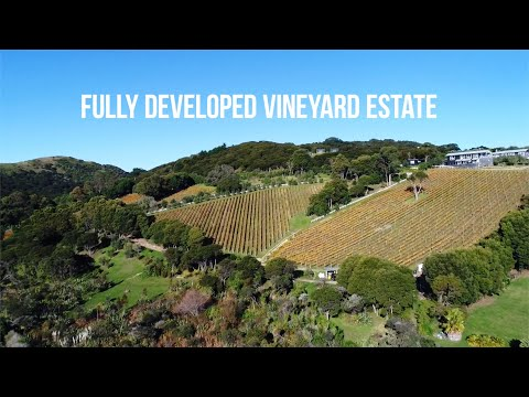 ABC Business Sales - Waterfront Vineyard Estate