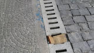 Portal Leouve - Problemas nas caneletas