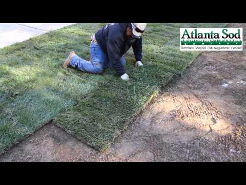 Atlanta Sod Company