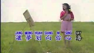 Hua Xin - 花心 Old Version