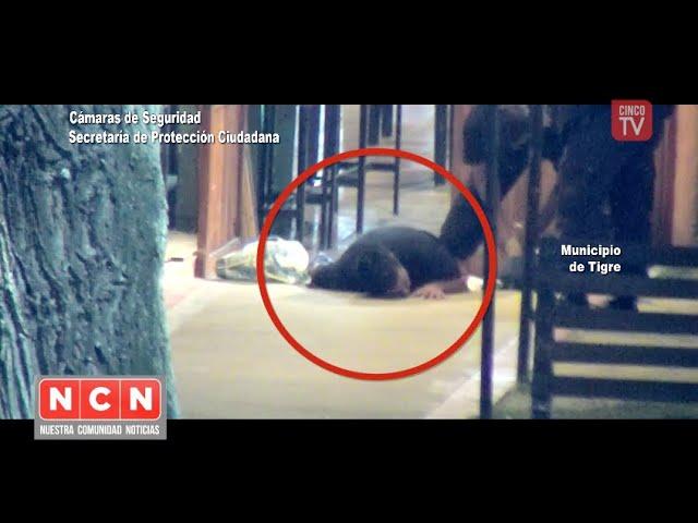 CINCO TV - El #SistemaAlertaTigreGlobal impidió el #robo de un restaurante