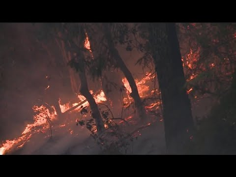 Cal Fire Takes A Look At The Future Of California Wildfires