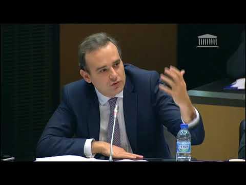 Intervention en commission sur la numérisation des services consulaires