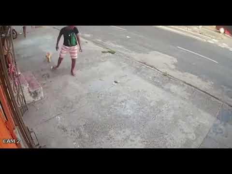 Ceará: Assaltante desiste de roubar após quebrar a sandália,  tropeçar e ser mordido por cachorro
