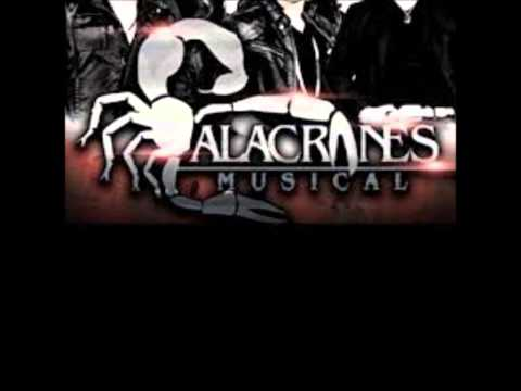 Alacranes Musical/ El Criminal