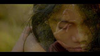 Fearing Love - Arash Behzadi