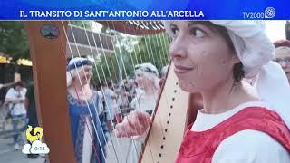 A Padova la festa di Sant'Antonio