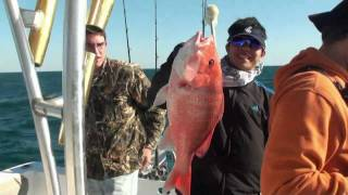 Gulf of Mexico blue water fishing