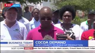Kilifi County to introduce organic cocoa farming
