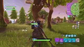 Fortnight dubs\playing with subs\