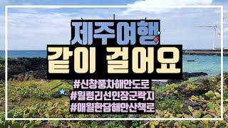 제주 여행 코스 신창 월령리 애월 걷기 힐링 풍경 산책…