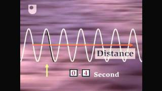 Oscillation and Wave Speed - Exploring Wave Motion (2/5)