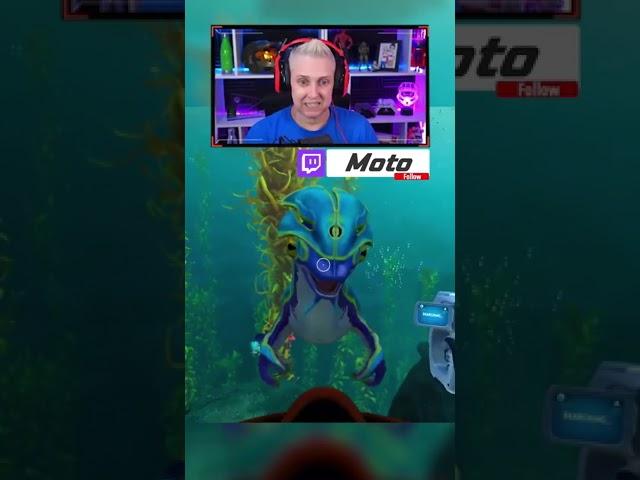 Sea Monkey Thief   Subnautica: Below Zero   Xbox Series X #Shorts