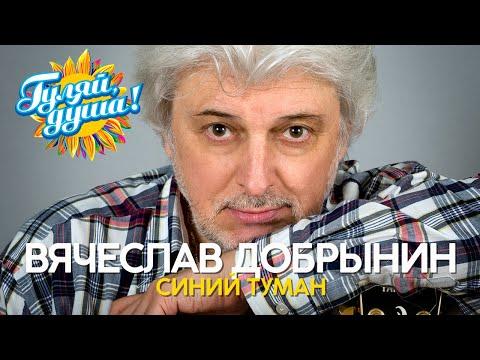 Вячеслав Добрынин - Синий туман - Душевные песни