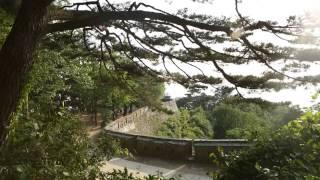 Gwangju ''My City, Our World Heritage'' - International Video Competition