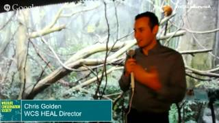 Hangout with Lemurs in Madagascar! at the Bronx Zoo