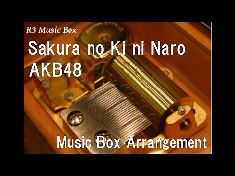 Sakura no Ki ni Naro/AKB48 [Music Box]