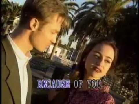 Diane Warren - Because You Loved Me (Lyric Video)