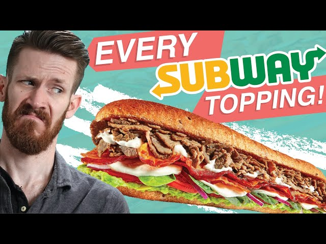 I BOUGHT EVERYTHING FROM SUBWAY IN 1 SANDWICH !