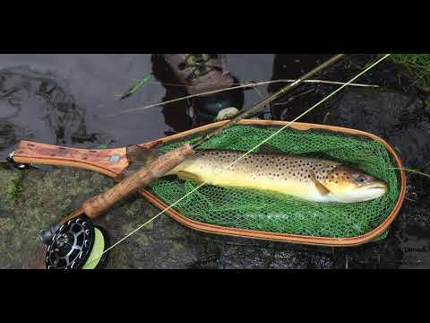 Sea Trout Angling On The Dennet River, Co Tyrone