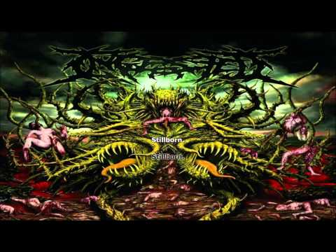 Ingested - Stillborn (Lyrics Video)