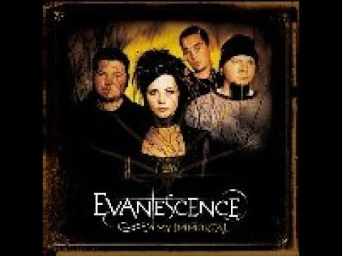 evanescence ultrastar