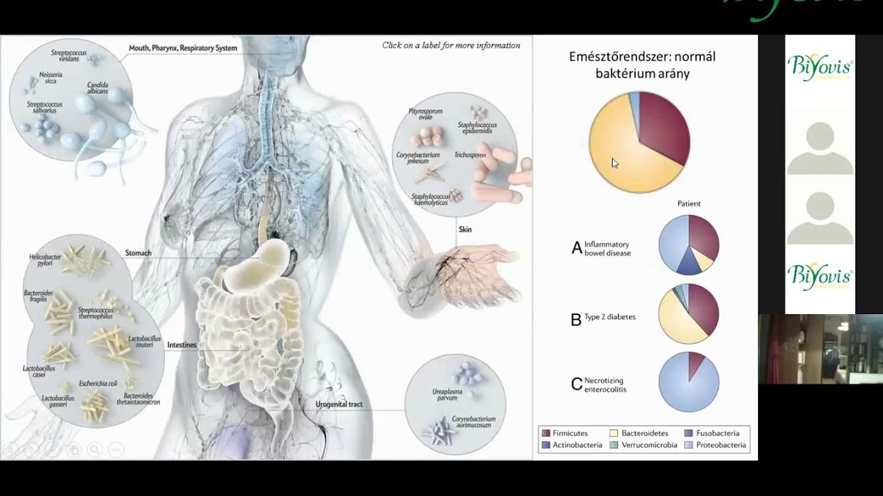 vastagbél méregtelenítő Szingapúrban giardia colon cancer