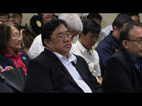 DAR chief in facing CA: Land conversion will continue