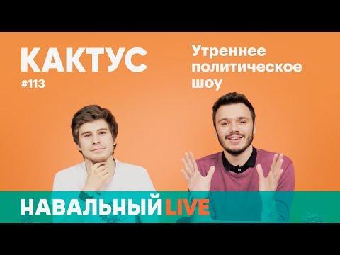 Кактус #113. Гость — Андрей Коновалов, Illumate