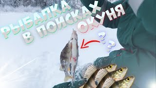 И такое бывает на рыбалке В поисках крупного окуня Зимняя рыбалка 2021