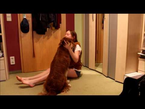 Dog reunited with owner after 2 weeks_NaFi4ever
