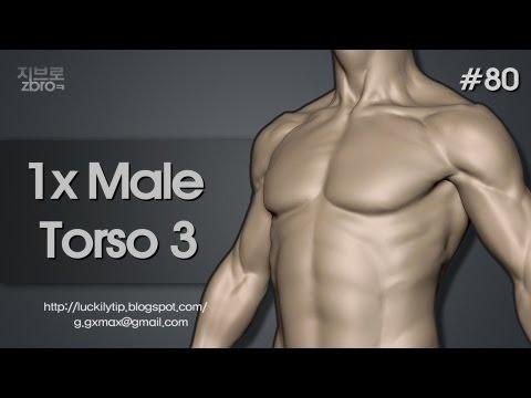 Zbrush Sculpting - 1x Male Torso 3
