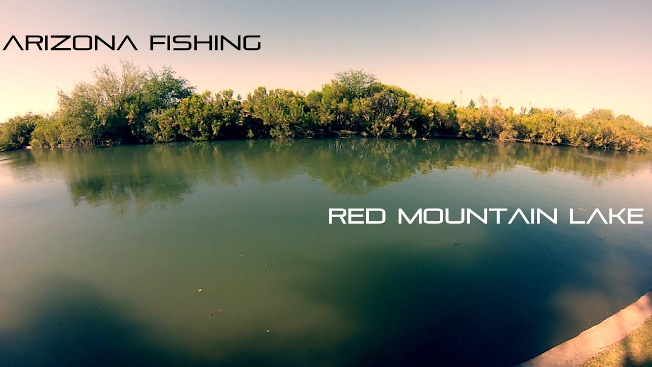 Arizona fishing at red mountain lake youtube for Fishing lakes in arizona