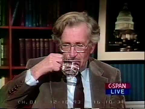 Noam Chomsky on Trade and NAFTA (1993)