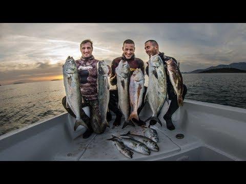 Spearfishing 🇬🇷   AMAZING ADVENTURE in the Ionian Sea - Ψαροντούφεκο Φοβερή περιπέτεια στο Ιόνιο ✅