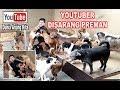 Seru Banget Makan Bareng 50 Ekor Anjing !!! & Tips Wangi Dari Shelter