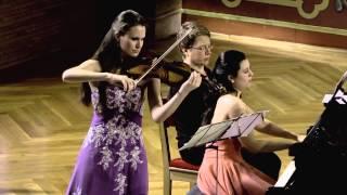 J. Brahms Violin Sonata Op. 78 - Lea & Esther Birringer