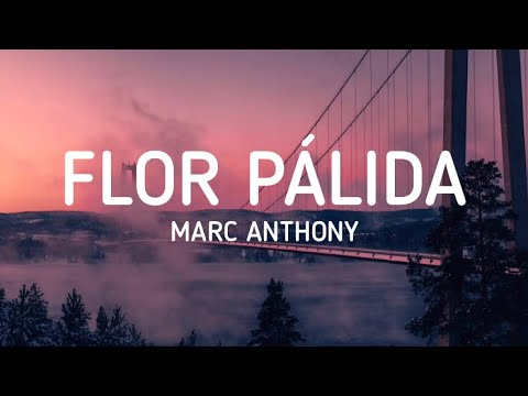 Marc Anthony Flor Pálida Letra Lyrics Youtube