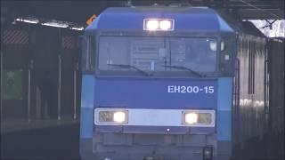 EH200牽引貨物列車 大宮駅通過 JRFreght train pull by EH200 15 Oomiya Station