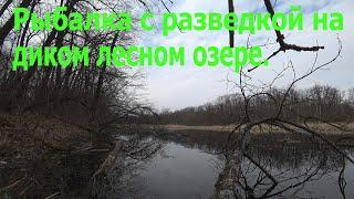 Разведка с рыбалкой на диком лесном озере