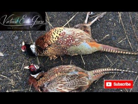 How To Cook Wild Pheasant Recipe