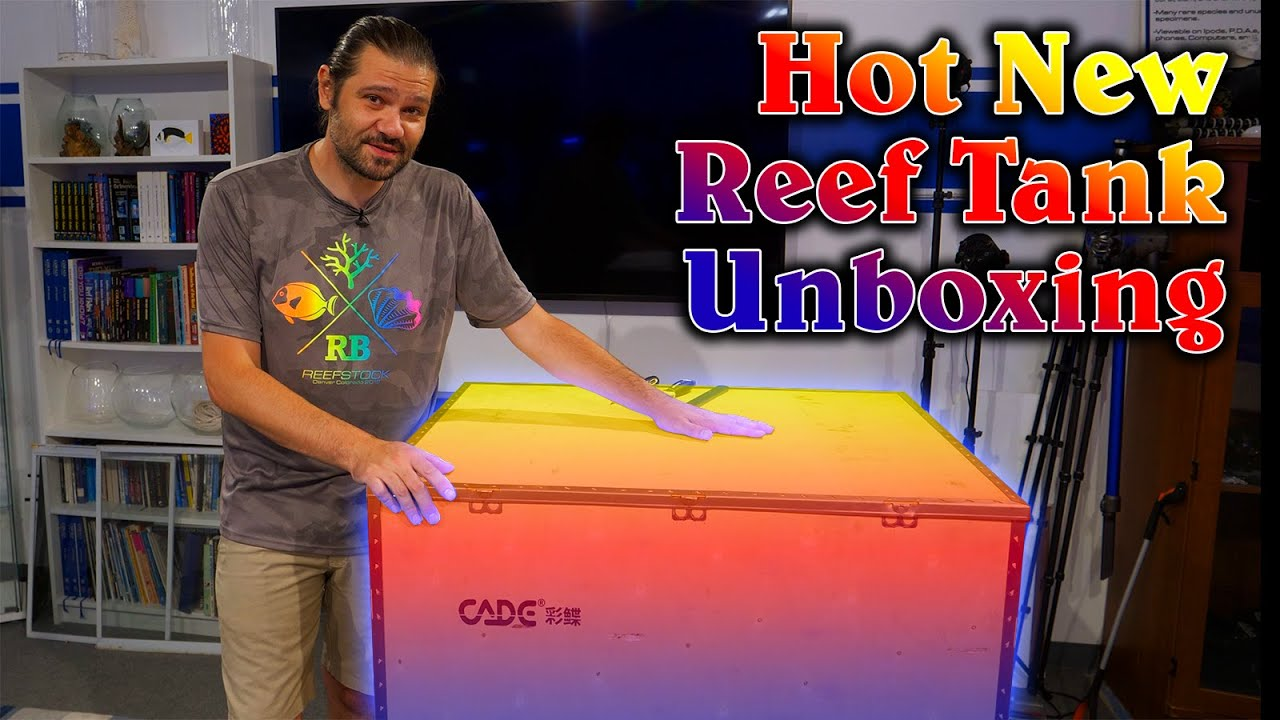 Unboxing the New ADVANCED All In One Reef Tank from CADE, Pro Reef 900 S2