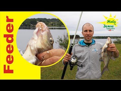 Оснащение донок на леща так, чтобы реально ловить на них рыбу.