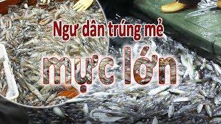 Tàu cá Hải Phòng gặp làn mực - Trị giá hàng chục triệu đồng / seafood exploited