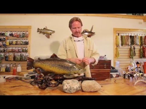 Angelgerät Gewichte Finesse Blei Bass Chub Sinker Dauerhaft 5x Barsch Drop Shot