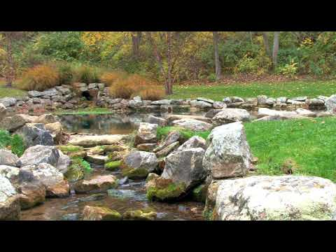 Relaxing Nature Ambient Sound-Water Streaming-Background for Relaxation,Sleep,Meditation - HD 1080p